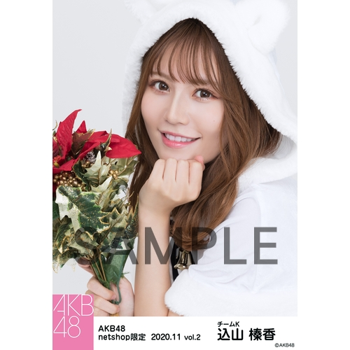【予約商品】AKB48 2020年11月度 net shop限定個別生写真5枚セットvol.2 込山榛香