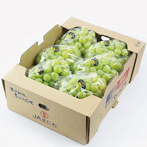ぶどう シャインマスカット 晴王 赤秀 5~10房 約5kg 岡山県産 JAおかやま お中元 葡萄 ブドウ