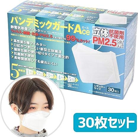 5層フィルター3Dマスク 30枚セット パンデミックガード 個包装 マスク 99%以上カット 花粉 超高性能 ウィルス 細菌 花粉 PM2.5 環境化学 立体構造