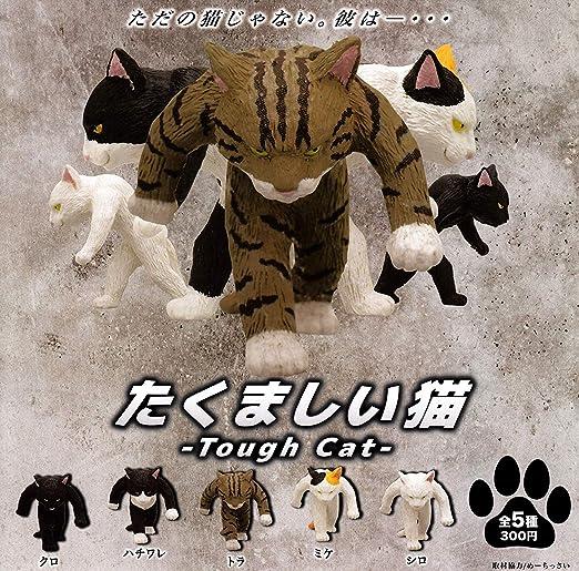 たくましい猫 [全5種セット(フルコンプ)]